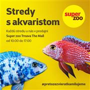 stredy_s_akvaristom_fb_ig.png