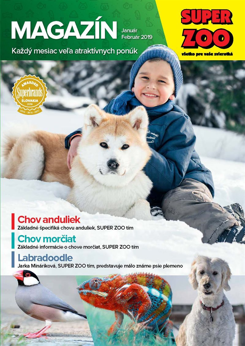 sz_magazin_jan-feb_2019_web_page_01